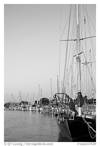Yachts, sunset. Redwood City,  California, USA (black and white)