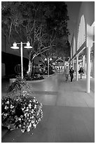 Couple walking by stores and flowers, Stanford Shopping Center. Stanford University, California, USA (black and white)