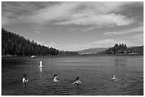 Family in water, Emerald Bay, California. USA ( black and white)