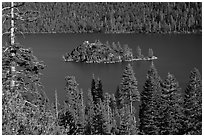 Forested slopes and Fannette Island, Emerald Bay, California. USA (black and white)