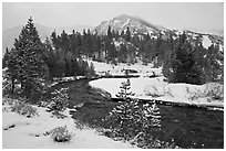 Creek, trees, and mountains with fresh snow. California, USA (black and white)