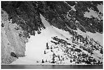 Sunlit Slope with snow, Ellery Lake. California, USA ( black and white)