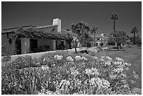 Mediterranean-style houses, flowers, and palm trees. Santa Barbara, California, USA ( black and white)