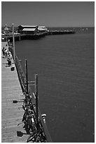 Stearns Wharf from above. Santa Barbara, California, USA (black and white)