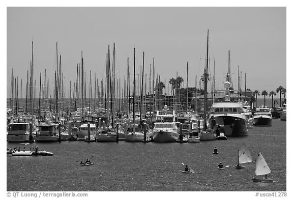 Santa Barbara Harbor. Santa Barbara, California, USA (black and white)