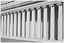 Columns, California Palace of the Legion of Honor. San Francisco, California, USA ( black and white)