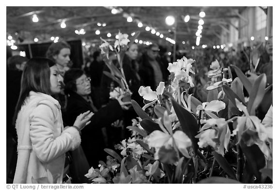 Women look at orchids during festival, Mason Center. San Francisco, California, USA (black and white)