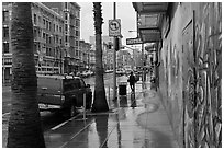 Rainy street. San Francisco, California, USA ( black and white)