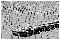 Flag draped coffins and crosses, Santa Monica beach. Santa Monica, Los Angeles, California, USA (black and white)