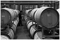 Winemaker checking barrels of wine being aged. Napa Valley, California, USA (black and white)