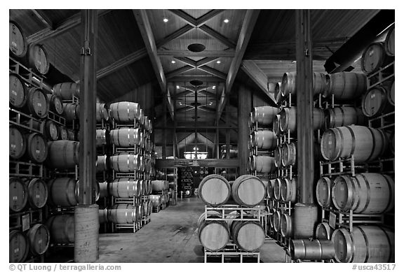 Large room filled with barrels of wine. Napa Valley, California, USA (black and white)