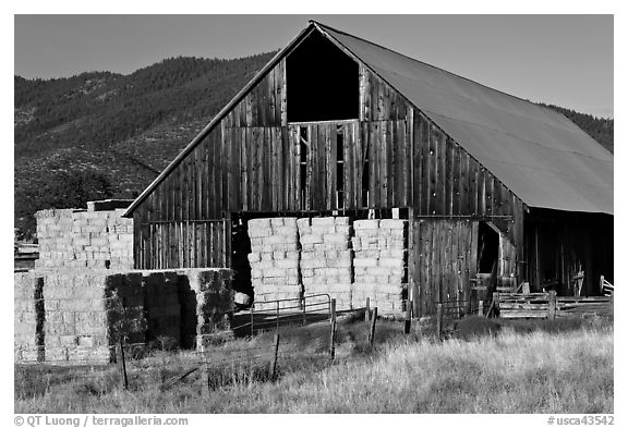 Barn and hay, Yreka. California, USA (black and white)