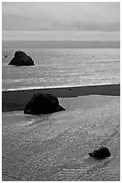 Shimmering waters, Mouth of the Russian River, Jenner. Sonoma Coast, California, USA ( black and white)