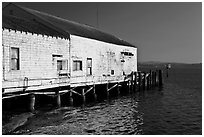 Wharf building, Bodega Bay. Sonoma Coast, California, USA (black and white)