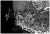 Children looking at aquarium, California Academy of Sciences. San Francisco, California, USA<p>terragalleria.com is not affiliated with the California Academy of Sciences</p> (black and white)