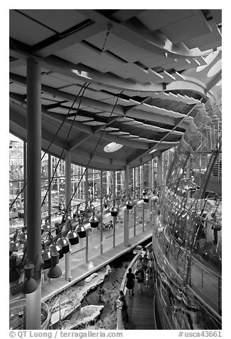 Four-story Rainforest dome from above, California Academy of Sciences. San Francisco, California, USA (black and white)