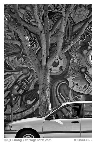 Black and white picture photo man smoking in car tree for Black and white tree mural