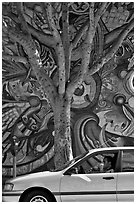 Man smoking in car, tree, and mural, Mission District. San Francisco, California, USA (black and white)