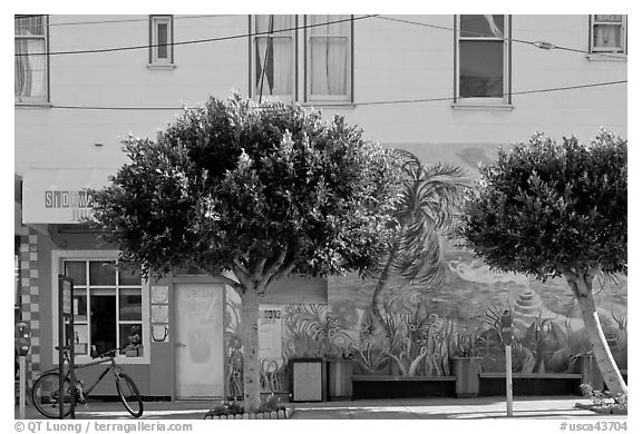 Store, trees and mural, Mission District. San Francisco, California, USA (black and white)