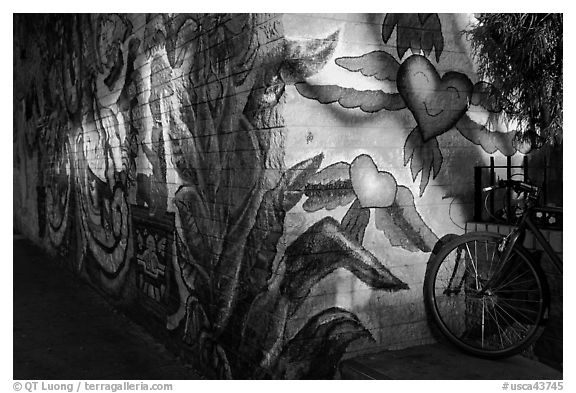 Bicycle and last light on mural, Mission District. San Francisco, California, USA (black and white)