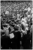 Graduating students celebrating commencement. Stanford University, California, USA (black and white)
