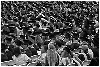Graduates in academic regalia. Stanford University, California, USA (black and white)