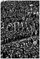 Dense rows of graduating college students in academic heraldy. Stanford University, California, USA ( black and white)