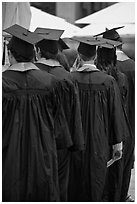 Graduates with robes and square caps seen from behind. Stanford University, California, USA ( black and white)