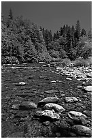 Clear Sacramento River, Castle Crags State Park. California, USA ( black and white)