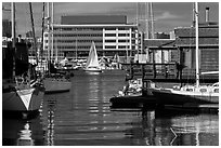 Yachts and houseboats, Alameda. Oakland, California, USA (black and white)