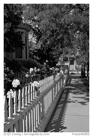 Manicured frontyard with flowers, Preservation Park. Oakland, California, USA (black and white)