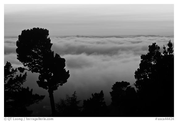 Low clouds at sunset seen from foothills. Oakland, California, USA (black and white)