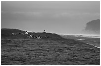 Surfers waiting for wave at Mavericks. Half Moon Bay, California, USA ( black and white)