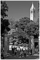 Sather Gate and Campanile, UC Berkeley. Berkeley, California, USA ( black and white)