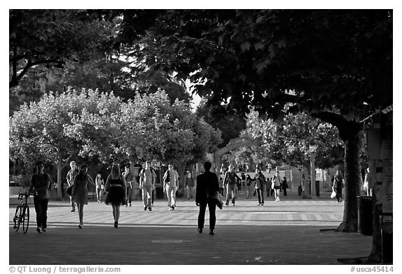Students walking on Sproul Plazza. Berkeley, California, USA (black and white)
