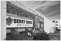 Wall with mural celebrating berry growing. Watsonville, California, USA (black and white)