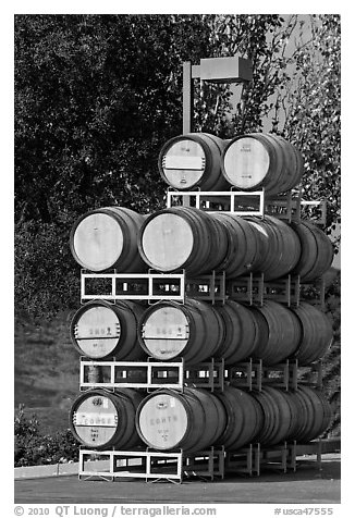 Barels of wine stacked outside, Artesa Winery. Napa Valley, California, USA (black and white)