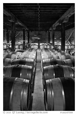 Wine aging in wooden barrels. Napa Valley, California, USA