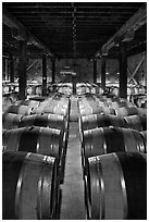Wine aging in wooden barrels. Napa Valley, California, USA (black and white)
