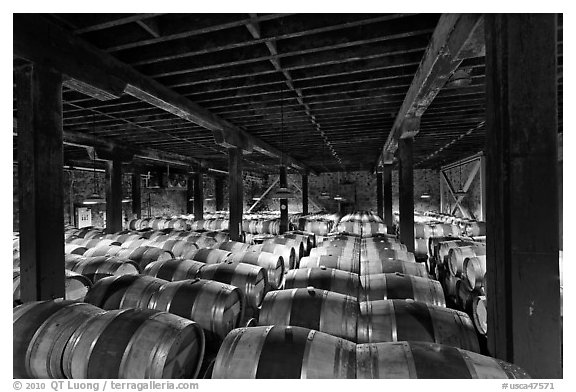 Barrels of wine in wine cellar. Napa Valley, California, USA (black and white)