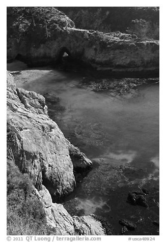 Emerald waters and kelp, China Cove. Point Lobos State Preserve, California, USA (black and white)