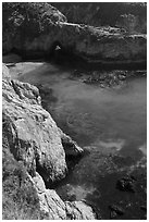 Emerald waters and kelp, China Cove. Point Lobos State Preserve, California, USA ( black and white)