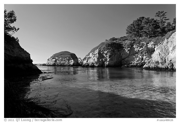 China Cove. Point Lobos State Preserve, California, USA (black and white)
