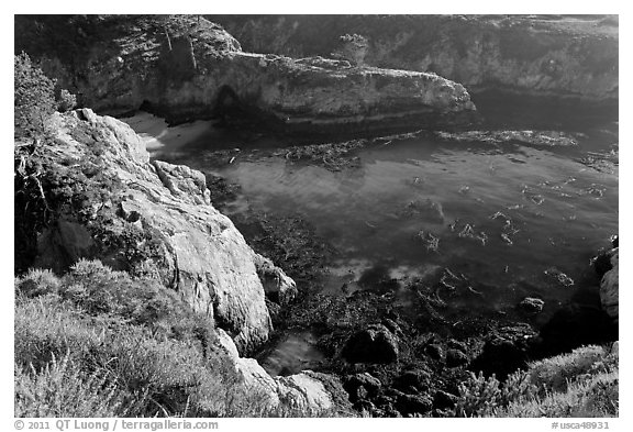 Rocks, water, and kelp, China Cove. Point Lobos State Preserve, California, USA (black and white)