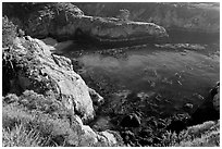 Rocks, water, and kelp, China Cove. Point Lobos State Preserve, California, USA ( black and white)