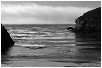 Marine layer offshore China Cove. Point Lobos State Preserve, California, USA ( black and white)