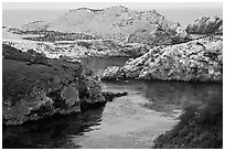 Fjord and rocks laden with birds. Point Lobos State Preserve, California, USA (black and white)
