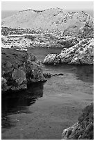 Rocks covered with seabirds. Point Lobos State Preserve, California, USA ( black and white)