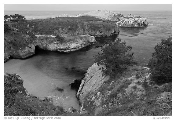 China Cove on cloudy day. Point Lobos State Preserve, California, USA