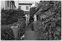 Alley. Carmel-by-the-Sea, California, USA (black and white)